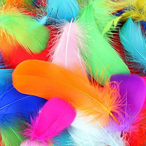 SUNMI 300 Stück Bunte Federn, 8-12 cm, 10 Farben, Sicher und Ungiftig und Nicht verblassen.