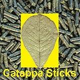 catappa de baquetas (seemandel Árbol Hojas) 100gramos pellets para Gambas krebse caracoles & Co forro Sticks + Agua Tratamiento