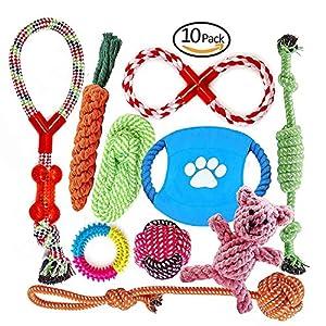 Fonpoo Ensemble Lot de 10 de jouets pour chien, durables mâcher corde jouet solitude petits et moyens chiens santé