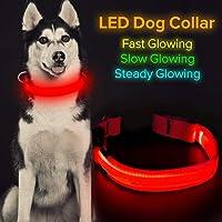 Iseen - Collare per cani a LED, ricaricabile tramite USB, colore: Rosso