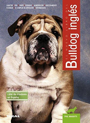 Bulldog inglés par PHIL MAGGITTI