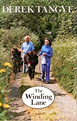 The Winding Lane (The Minack Chronicles)