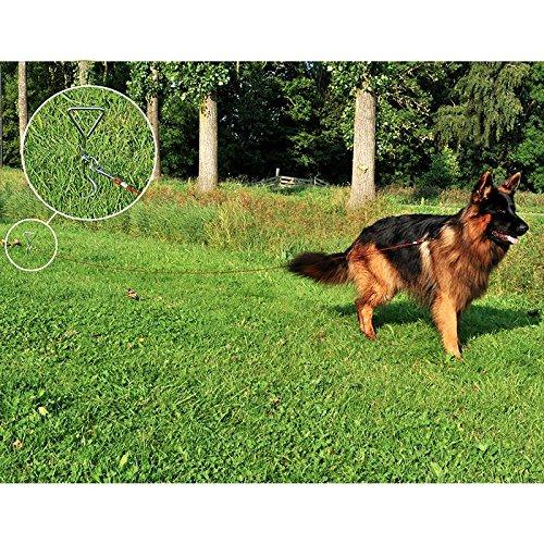 Anlegespirale erdspirale haGa-welt piquet d'ancrage pour chiens ou de brebis ou de chèvre