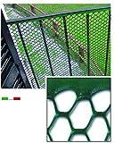 Vigor 78710 Rete Plastica Esagonale, 20 x 19, 10 mt, 100 cm, Verde