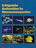 Erfolgreiche Nachzuchten im Meerwasseraquarium by Joachim Frische (1999-01-06)