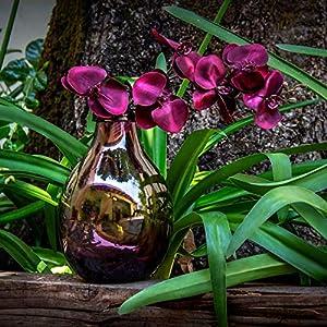 Glasmanufaktur Mitienda, Vase, lila, 25 cm Höhe, Dekovase Botellon lila, Blumenvase mit Bauch, mundgeblasene Vase aus Mexiko, Glas-Recycling