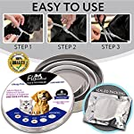 flea and tick collar for dog cat, 8 months protection, natural plant extracts-waterproof-safe & hypoallergenic-anti flea and tick prevention-pest control collars for pets 25 inches Flea and Tick Collar for Dogs and Cats, 8 Months 61OSuZQfPmL