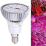 Demiawaking Vollspektrum E14 24Led (16 Rot + 8 Blau) Wachsen Licht AC85-265V LED Pflanzen Lampe für Garten, Aquarium, Gemüse Hydrokultur 60mm * 60mm * 80mm