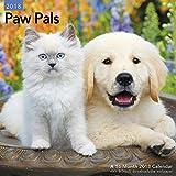 2018 Paw Pals Wall Calendar (Mead)