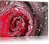 Elegante rote Rose mit Wassertropfen Schwarz/Weiß, Format: 80x60 auf Leinwand, XXL riesige Bilder fertig gerahmt mit Keilrahmen, Kunstdruck auf Wandbild mit Rahmen, günstiger als Gemälde oder Ölbild, kein Poster oder Plakat