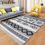 GLP Fußmatten Living/Bed Room Teppiche Garden Rugs Kurzhaar Flanell Footmat Absorbent Schnell trocknend Indoor Pad (Color : D, Size : 200 * 240CM)