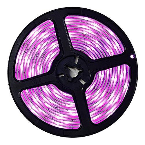 Wigbow Rosa LED Streifen Licht - 16.4 Fuß 5M SMD 3528 150 Leds Flexible Beleuchtung-DIY Weihnachtsferienhaus Küche Bar Indoor Outdoor Party Dekoration (Led Outdoor Streifen-lichter)