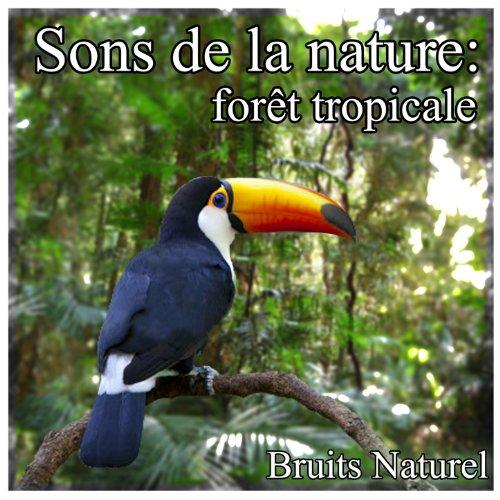 sons-de-la-nature-foret-tropicale