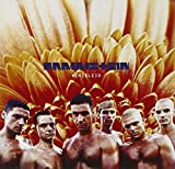 Rammstein: Herzeleid (Audio CD)