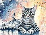Wowdecor DIY Malen nach Zahlen Kits Geschenk für Erwachsene Kinder, Malen nach Zahlen Home Haus Dekor - Graue Katze 40 x 50 cm Ohne Rahmen