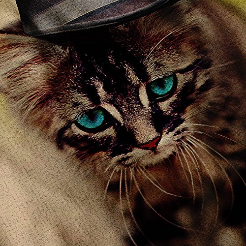 Kätzchen Katze Cool Niedlich Komisch Katze Gehen Damen S-2XL Muskelshirt | Wellcoda Grau