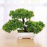 Japanischer Pinien Mit Schale,Bonsai Zeder,Home Hochzeit Dekoration,Hochwertiger Kunstbaum,Höhe ca. 20-24cm, 1