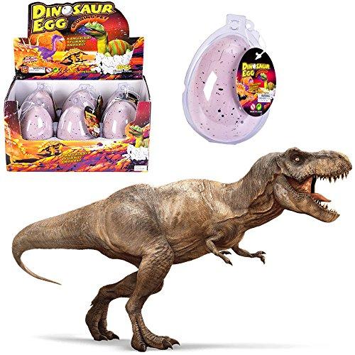 - 3 x Dino im Ei ★ NEU ★ ┃ ++ Echt schlüpfender Dino ++ ┃ Mitgebsel ┃ Kindergeburtstag ┃ Dinosaurier ┃ Schlüpfgarantie 100%┃ 3 x Dino Eier (Kinder-ei-kostüm)