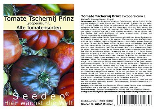 Tomate Tschernij Prinz (Lycopersicum L.) 25 Samen Reinsaat
