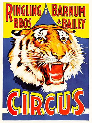 Wee Blue Coo LTD Advertising Exhibition Circus Barnum Bailey Ringling Bros Tiger USA Poster Print Vereinigte Staaten von Amerika