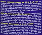 SILIBION G5 Silicium Organique Anti Oxydant Anti Vieillissement 500 ml