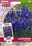 johnsons seeds - Pictorial Pack - Fiore - Lavanda Hidcote Strain - 100 Semi