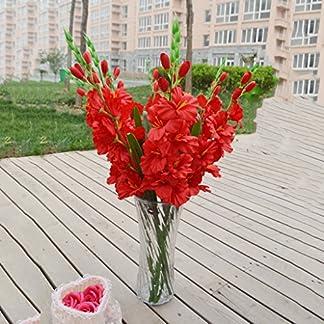80 Cm Artificial Gladiola Gladiolus Tallo De Flor Hogar Jardín Decoración Rojo