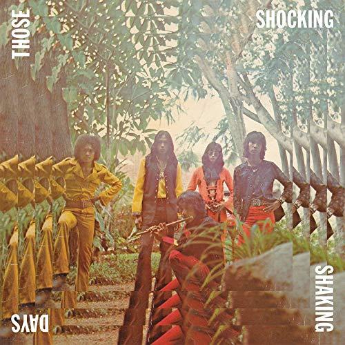 Those Shocking, Shaking Days