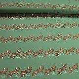 Kinderstoff Baumwolle Single Jersey grün Fuchs kbA GOTS
