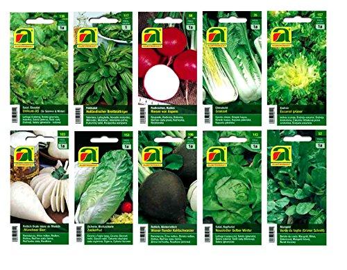 10 Sorten | Gemüsesamen Sortiment | für Anfänger geeignet | robuste Mischung | ab sofort Winter-Aktionspreis