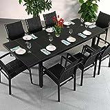 Beatrice Tisch mit 8 Georgia Stühlen - SCHWARZ | großer ausziehbarer Esstisch 240cm
