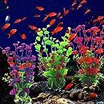 Sunlight House Plastic Artificial Aquatic Plants Aquarium Plants Landscaping Water Grass Decoration for Aquarium Fish… 5
