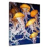 Kunstdruck - Quallen - 50x60 cm - Bilder als Leinwanddruck - Wandbild von Bilderdepot24 - Tierwelten - Leben im Meer - Quallen im Wasser