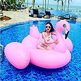 Carica rapida 19 m gonfiabile grande uccello di fenicottero uccelli anatre acqua di montagna piscina per adulti letto galleggiante giocattoli acquatici