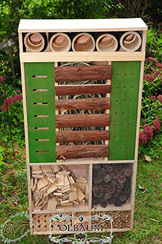 Insect Hotel 48cm, XXL, Front Green Weather Resistant Large Feeding Area, in Natural Wood, Inxxl VGR NATUR002Blue/Wooden House Natural Solid Wood Butterfly House for Insects and Bird Station Weather + Natural, Natural Wood