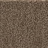Teppichboden Auslegware | Velours gemustert | 400 und 500 cm Breite | braun | Meterware, verschiedene Größen | Größe: 5 x 4m