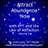 Attract Abundance Now: with EFT and the Law of Attraction Volume 1