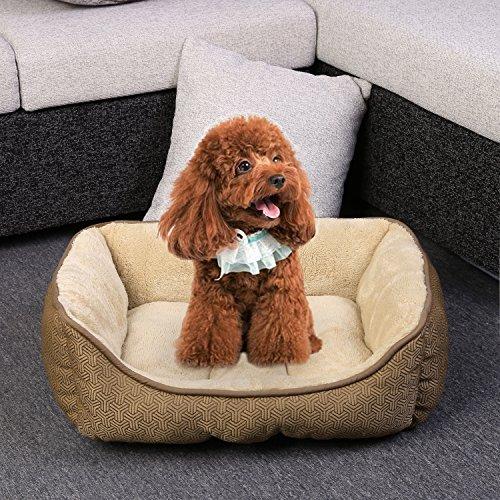 Sailnovo Hundebett Katzenbett Luxuriöse Haustierbett kleine hunde, mittelgroße hunde Schlafplätze und Ultra Weicher Plüsch Maschine waschbar kleine hunde Katzen sofa bed