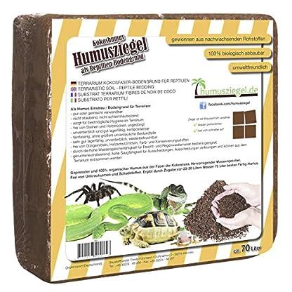 Humusziegel 1 block- 70 Coconut Litter for Reptiles, Terrarium Substrate, Terrarium Bedding, Ground Coconut, Tortoise… 6