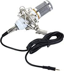 Generic Imported Professional Condenser Microphone Mic Sound Studio Recording Dynamic White