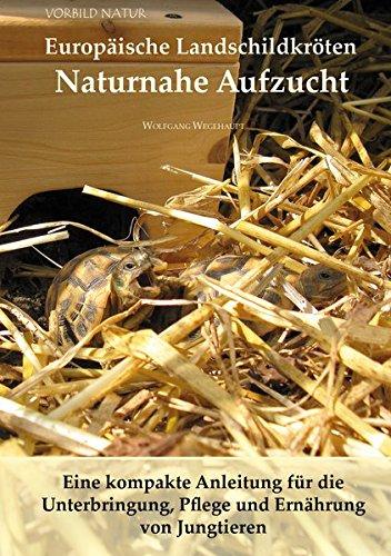 Europäische Landschildkröten Naturnahe Aufzucht: Eine kompakte Anleitung für die Unterbringung, Pflege und Ernährung von Jungtieren
