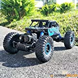 Vortex Toys Rock Crawler all Weather fun car