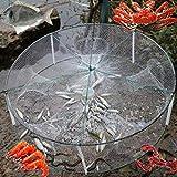 Qind Angeln Net Tragbarer Rund Fisch Garnelen Trap 33x 12cm Käfig Garnelen Fischernetz mit 4Pockets-Bait Traps-tishing Tools, Weiß