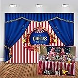 Zirkus Dekoration Test 2019 Preisvergleich Und Mehr