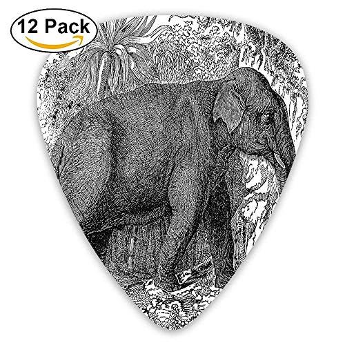 Sketchy Botanic Tropic Trees Leaves Elephant African Safari Animal Guitar Picks 12/Pack,0.46/0.73/0.96 Mm Guitar -