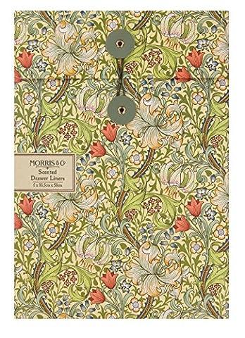 Morris & Co Heathcote & Ivory Lot de 5 fonds de tiroir parfumés Lys d'or
