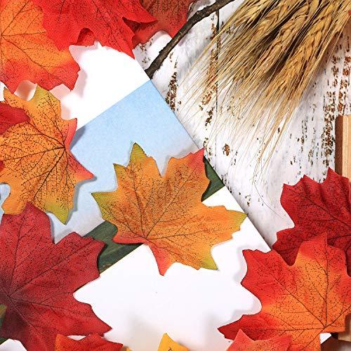 Zoom IMG-3 boao 650 pezzi foglie d