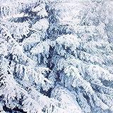 KING DO WAY Fotostudio Hintergrundstoff Schnee, Weihnachtsfotohintergrund aus Stoff und Vinyl, Baum, weiße Schneekulisse, Nutzung als Kulisse, Requisite, Studiorequisite, 3 m x 3 m für KING DO WAY Fotostudio Hintergrundstoff Schnee, Weihnachtsfotohintergrund aus Stoff und Vinyl, Baum, weiße Schneekulisse, Nutzung als Kulisse, Requisite, Studiorequisite, 3 m x 3 m