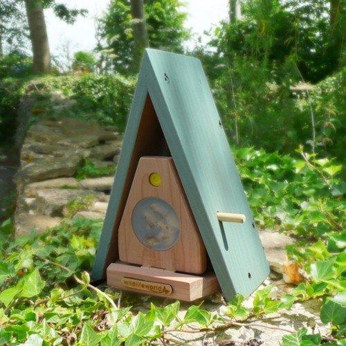 lichtnelke - WILDLIFE WORLD Schmetterlingsbehausung Schmetterlingshaus BTF5