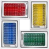 KIDS Vetrini da microscopio 48pcs Plastica microscopio preparato Vetrini di animali Insetti Piante Fiori Campioni di campioni per microscopi stereo # 2-002